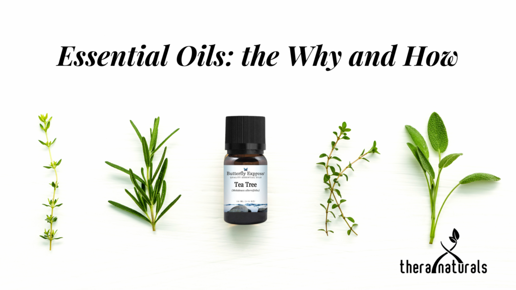 Image of essential oils and the plants that may be part of them.
